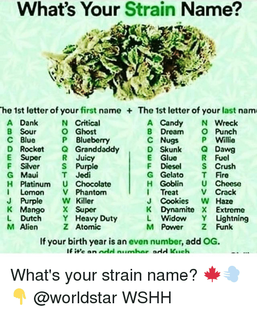 Candy, Cookies, and Crush: What's Your Strain Name?  he 1st letter of your first name The 1st letter of your last nam  A Dank  B Sour  C Blue  D Rocket Granddaddy  E Super R Juicy  F Siler S Purple  G Maui  H Platinum U Chocolate  I Lomon V Phantom  J Purple W Killer  K MangoSuper  L Dutch Y Heavy Duty  M Alien  A Candy N Wreclk  B Dream Punch  C Nugs P Willie  D Skunk QDawg  E Glue  F Diesel Crush  G Gelato T Fire  H Goblin U Cheese  I Treat V Crack  J Cookies W Haze  K Dynamite X Extreme  L Widow Y Lightning  M Power Z Funk  N Critical  O Ghost  P Blueberry  R Fuel  T Jedi  Z Atomic  If your birth year is an even number, add OG.  If i'e an odd numhar add Kach What's your strain name? 🍁💨👇 @worldstar WSHH