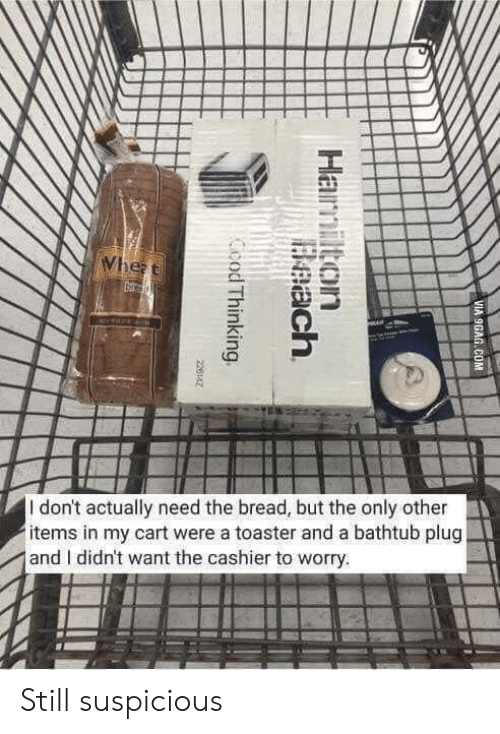 hamilton: Wheat  veala  I don't actually need the bread, but the only other  items in my cart were a toaster and a bathtub plug  and I didn't want the cashier to worry.  VIA 9GAG.COM  Hamilton  Beach  Ccod Thinking  226142 Still suspicious