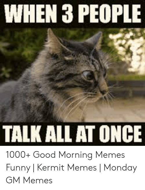 Funny Kermit Memes: WHEN 3 PEOPLE  TALK ALL AT ONCE 1000+ Good Morning Memes Funny | Kermit Memes | Monday GM Memes