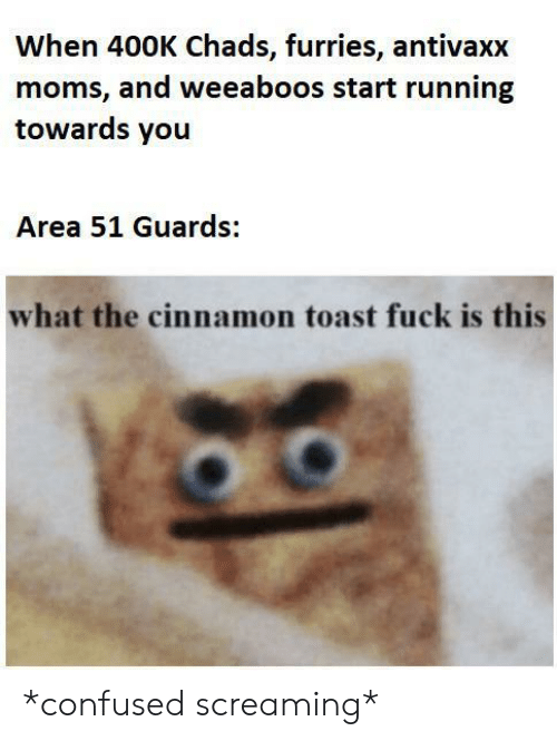 furries: When 400K Chads, furries, antivaxx  moms, and weeaboos start running  towards you  Area 51 Guards:  what the cinnamon toast fuck is this *confused screaming*