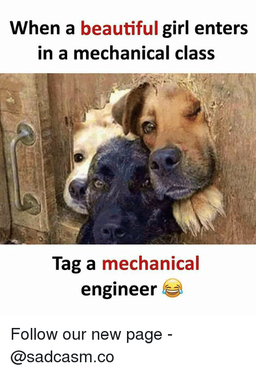 Beautiful, Memes, and Girl: When a beautiful girl enters  in a mechanical class  Tag a mechanical  engineer Follow our new page - @sadcasm.co