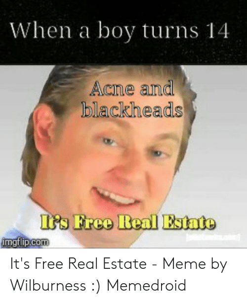 Estate Meme: When a boy turns 14  Acne and  blackheads  Gs Free Real Estate It's Free Real Estate - Meme by Wilburness :) Memedroid