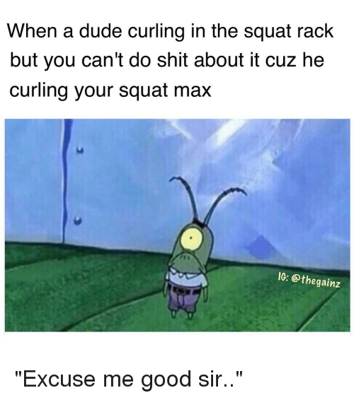 """Dude, Memes, and Squat: When a dude curling in the Squat rack  but you can't do Shit about it cuz he  curling your squat max  IG: @thegainz """"Excuse me good sir.."""""""