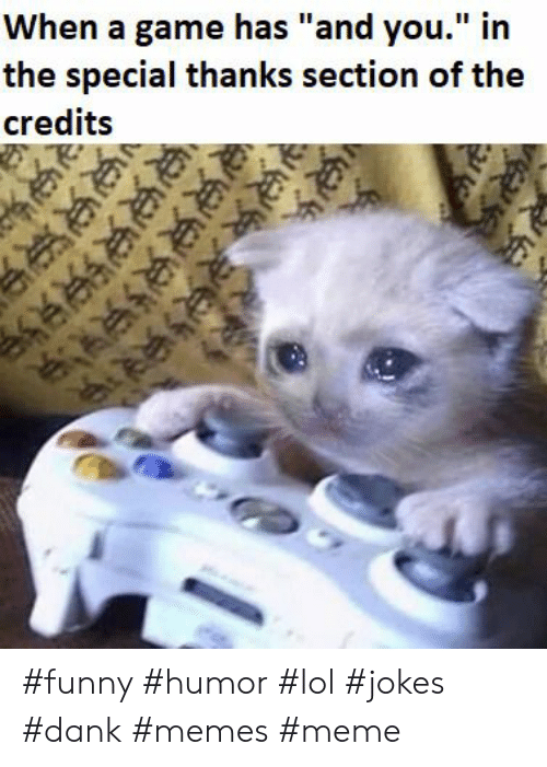 """Memes Meme: When a game has """"and you."""" in  the special thanks section of the  credits  R #funny #humor #lol #jokes #dank #memes #meme"""