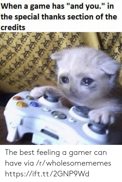 """The Best Feeling: When a game has """"and you."""" in  the special thanks section of the  credits  R  ఆకక  ఆ  జజుల The best feeling a gamer can have via /r/wholesomememes https://ift.tt/2GNP9Wd"""