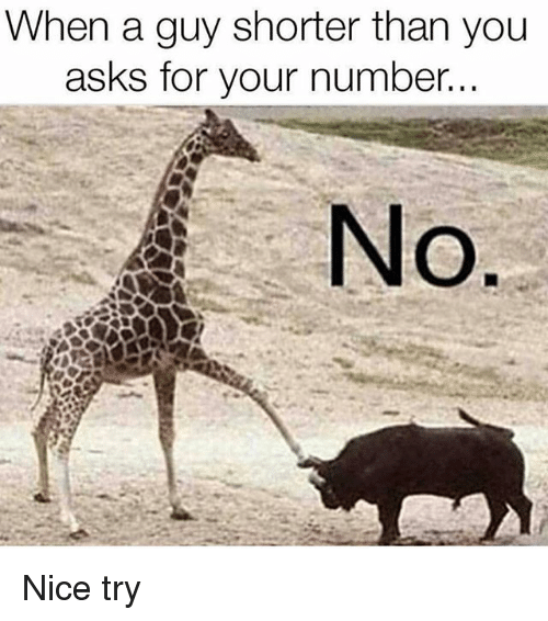 Memes, Nice, and Asks: When a guy shorter than you  asks for your number.  No Nice try