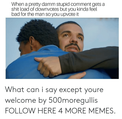 Damm: When a pretty damm stupid comment gets a  shit load of downvotes but you kinda feel  bad for the man so you upvote it What can i say except youre welcome by 500moregullis FOLLOW HERE 4 MORE MEMES.