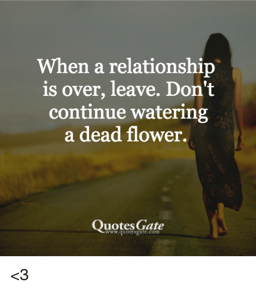 Quotes When A Relationship Is Over: 25+ Best Memes About Dead Flowers