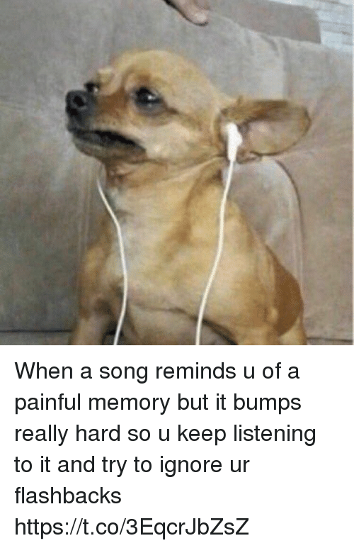 Funny, A Song, and Song: When a song reminds u of a painful memory but it bumps really hard so u keep listening to it and try to ignore ur flashbacks https://t.co/3EqcrJbZsZ