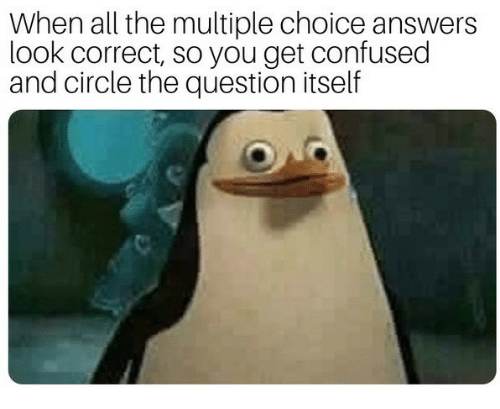 Confused, All The, and Answers: When all the multiple choice answers  look correct, so you get confused  and circle the question itself