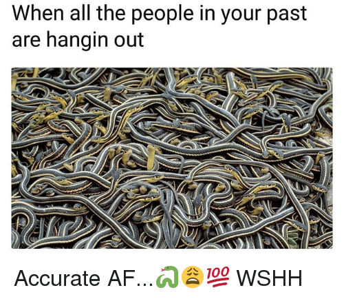 Af, Memes, and Wshh: When all the people in your past  are hangin out Accurate AF...🐍😩💯 WSHH