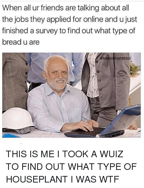 Friends, Wtf, and Girl: When all ur friends are talking about all  the jobs they applied for online and u just  finished a survey to find out what type of  bread u are  beentheretho  9 THIS IS ME I TOOK A WUIZ TO FIND OUT WHAT TYPE OF HOUSEPLANT I WAS WTF