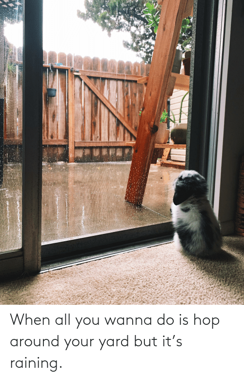 raining: When all you wanna do is hop around your yard but it's raining.