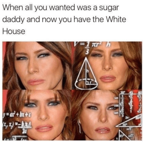 A Sugar Daddy: When all you wanted was a sugar  daddy and now you have the White  House  2  2a