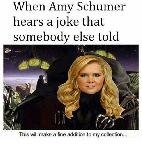 Amy Schumer, Memes, and 🤖: When Amy Schumer  hears a joke that  somebody else told  This will make a fine addition to my collection.
