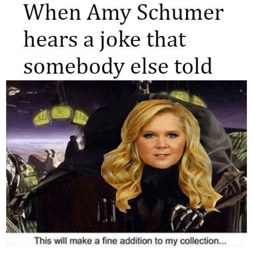 Dank Memes: When Amy Schumer  hears a joke that  somebody else told  This will make a fine addition to my collection...
