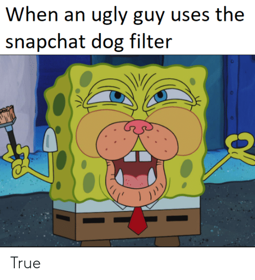 dog filter: When an ugly guy uses the  snapchat dog filter True