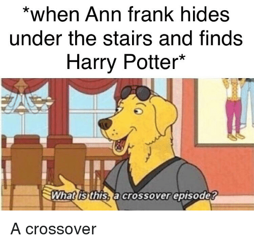 ann frank: *when Ann frank hides  under the stairs and finds  Harry Potter*  Whatlisthis,a crossover episode?
