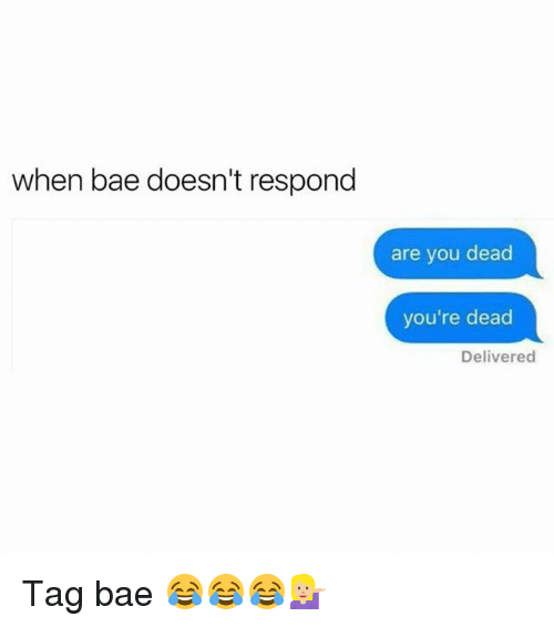 Bae, Funny, and You: when bae doesn't respond  are you dead  you're dead  Delivered Tag bae 😂😂😂💁🏼