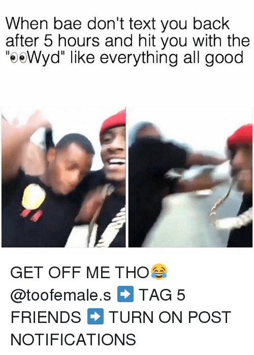 """Texting, Wyd, and Dank Memes: When bae don't text you back  after 5 hours and hit you with the  """"e e Wyd"""" like everything all good GET OFF ME THO😂 @toofemale.s ➡️ TAG 5 FRIENDS ➡️ TURN ON POST NOTIFICATIONS"""
