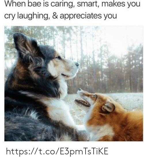 When Bae: When bae is caring, smart, makes you  cry laughing, & appreciates you https://t.co/E3pmTsTiKE