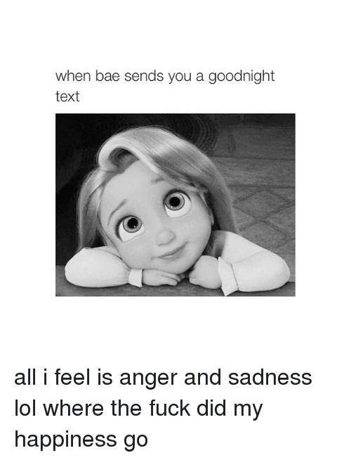 Happiness: when bae sends you a goodnight  text all i feel is anger and sadness lol where the fuck did my happiness go