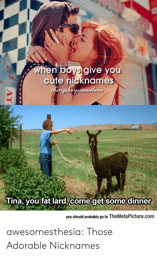 nicknames: when boys give you  cute nicknames  Chenguberdawelone  Tina, you fat lard, come getsome dinner  you should probably go to TheMetaPicture.com  AT awesomesthesia:  Those Adorable Nicknames