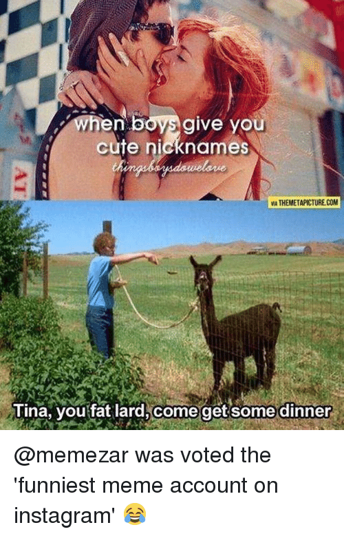 Cute, Instagram, and Meme: when boys give you  cute nicknames  MA THEMETAPICTURE.COM  Tina, you fat lard,come get some dinner @memezar was voted the 'funniest meme account on instagram' 😂