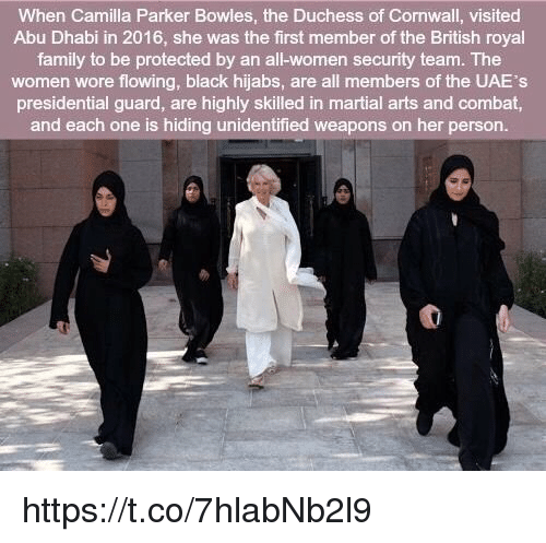 abu dhabi: When Camilla Parker Bowles, the Duchess of Cornwall, visited  Abu Dhabi in 2016, she was the first member of the British royal  family to be protected by an all-women security team. The  women wore flowing, black hijabs, are all members of the UAE's  presidential guard, are highly skilled in martial arts and combat,  and each one is hiding unidentified weapons on her person. https://t.co/7hlabNb2l9
