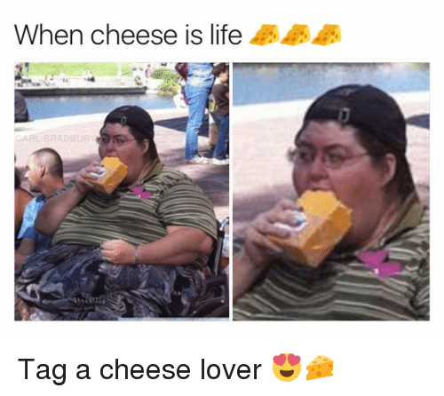 Life, Memes, and 🤖: When cheese is life  CARL BRADBURY Tag a cheese lover 😍🧀