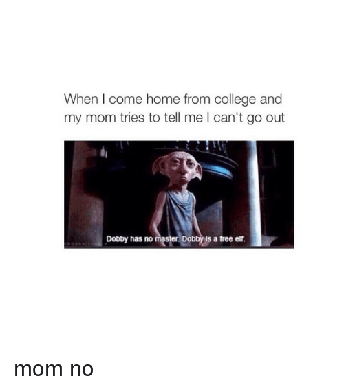 College, Elf, and Moms: When come home from college and  my mom tries to tell me l can't go out  Dobby has no mas  Dobby ls a free elf mom no