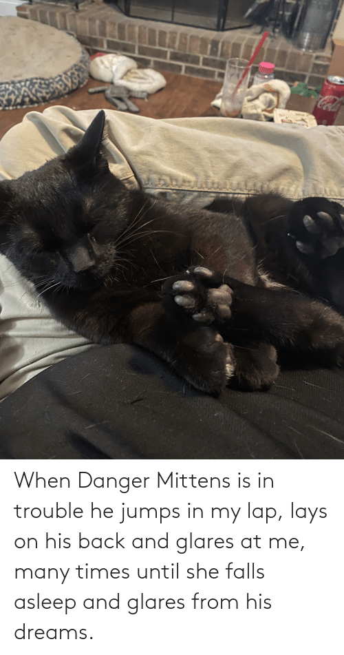 Lay's: When Danger Mittens is in trouble he jumps in my lap, lays on his back and glares at me, many times until she falls asleep and glares from his dreams.