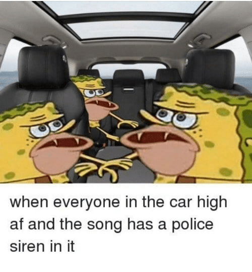 siren: when everyone in the car high  af and the song has a police  siren in it