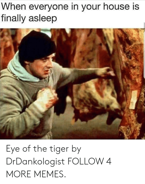 Eye Of The Tiger: When everyone in your house is  finally asleep Eye of the tiger by DrDankologist FOLLOW 4 MORE MEMES.