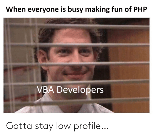 Developers: When everyone is busy making fun of PHP  VBA Developers Gotta stay low profile…