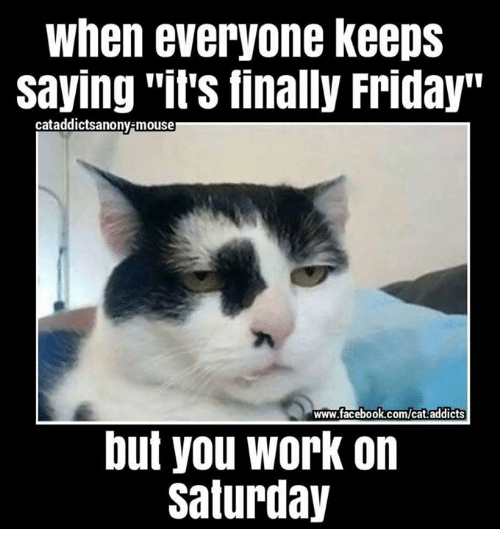 "Working On Saturday: When everyone keeps  Saying ""it's finally Friday""  cataddicts anony-mouse  www.facebook.com/cat addicts  but you work on  Saturday"