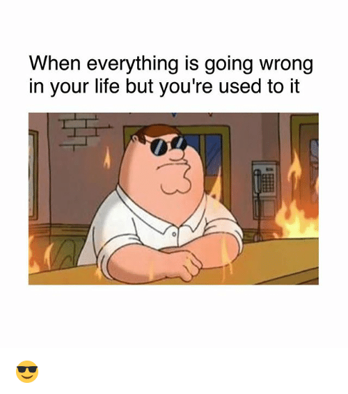 Life, Memes, and 🤖: When everything is going wrong  in your life but you're used to it  0 😎