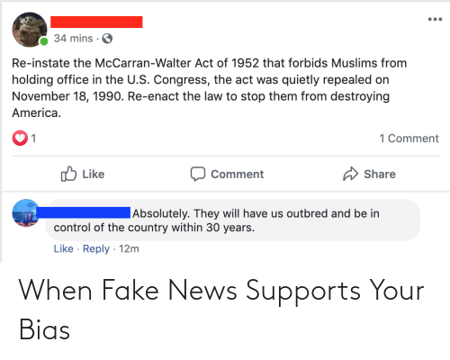 Fake News: When Fake News Supports Your Bias