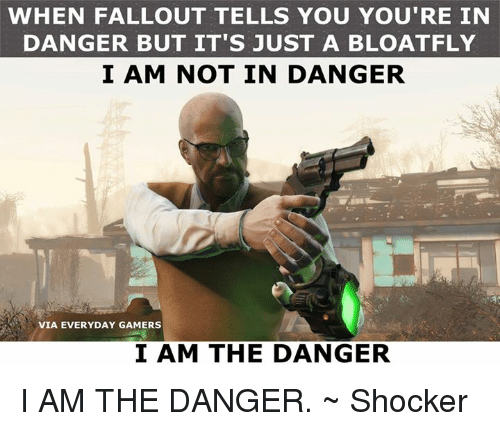 Memes, Fallout, and 🤖: WHEN FALLOUT TELLS YOU YOU'RE IN  DANGER BUT IT'S JUST A BLOATFLY  I AM NOT IN DANGER  VIA EVERYDAY GAMERS  I AM THE DANGER I AM THE DANGER. ~ Shocker