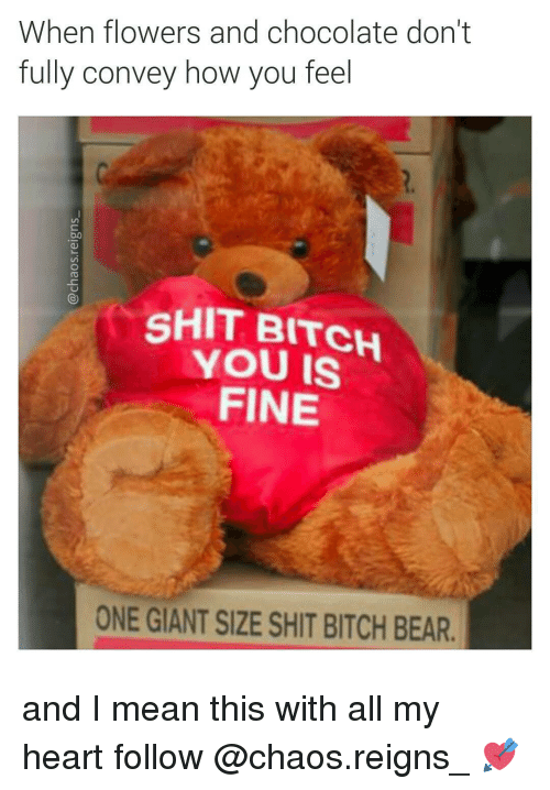 Shit Bitch You Fine: When flowers and chocolate don't  fully convey how you feel  SHIT BITCH  YOU FINE  ONE GIANT SIZE SHIT BITCH BEAR. and I mean this with all my heart follow @chaos.reigns_ 💘