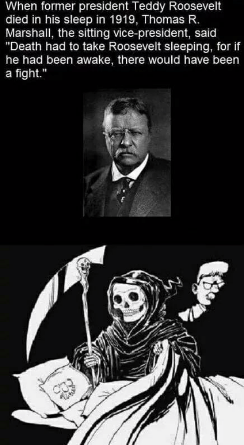 """awake: When former president Teddy Roosevelt  died in his sleep in 1919, Thomas R.  Marshall, the sitting vice-president, said  """"Death had to take Roosevelt sleeping, for if  he had been awake, there would have been  a fight."""""""