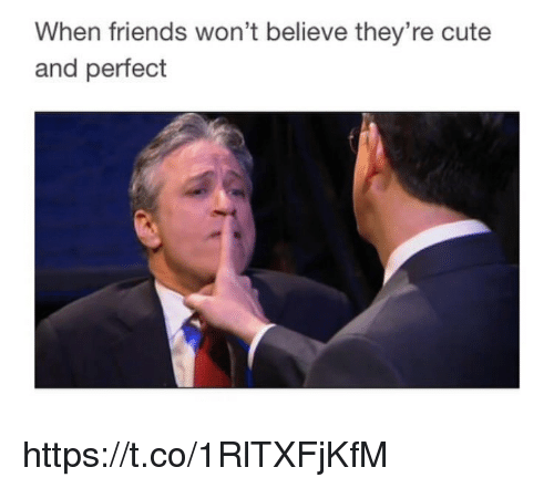 Cute, Friends, and Memes: When friends won't believe they're cute  and perfect https://t.co/1RlTXFjKfM