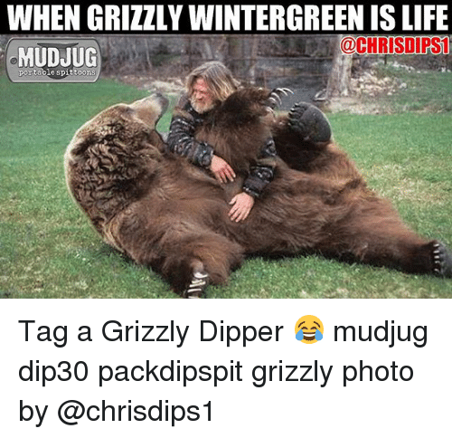 dipper: WHEN GRIZZLY WINTERGREEN IS LIFE  @CHRISDIPS  MUDJUG  portable spittoons Tag a Grizzly Dipper 😂 mudjug dip30 packdipspit grizzly photo by @chrisdips1