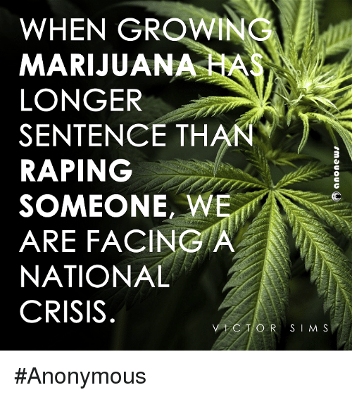 Memes, Anonymous, and Rape: WHEN GROWINC  MARIJUANA  LONGER  SENTENCE THAN  RAPING  SOMEONE, WE  ARE FACING A  NATIONAL  CRISIS  C T O R S I M S #Anonymous