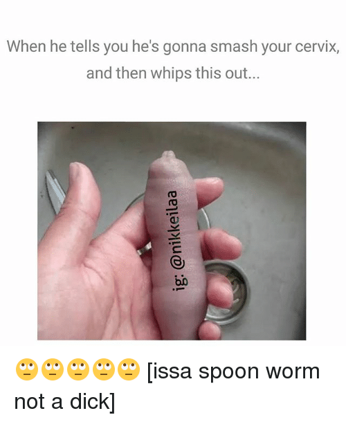 Memes, Smashing, and Dick: When he tells you he's gonna smash your cervix,  and then whips this out...  0) 🙄🙄🙄🙄🙄 [issa spoon worm not a dick]