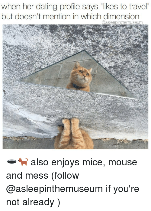 """mouses: when her dating profile says """"likes to travel""""  but doesn't mention in which dimension  @asleepinthemuseum 🕳🐈 also enjoys mice, mouse and mess (follow @asleepinthemuseum if you're not already )"""