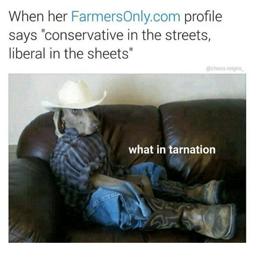 """farmers only.com: When her  Farmers only.com profile  says """"conservative in the streets,  liberal in the sheets""""  @chaos reigns  what in tarnation"""