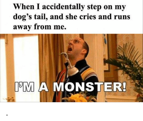 Crying, Dogs, and Memes: When I accidentally step on my  dog's tail, and she cries and runs  away from me.  IM A MONSTER! .