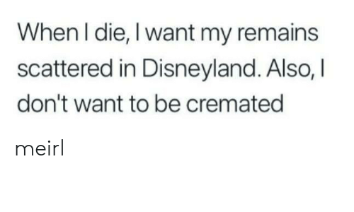 disneyland: When I die, I want my remains  scattered in Disneyland. Also, I  don't want to be cremated meirl