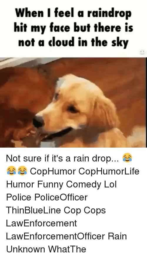 rain drops: When I feel a raindrop  hit my face but there is  not a cloud in the sky Not sure if it's a rain drop... 😂😂😂 CopHumor CopHumorLife Humor Funny Comedy Lol Police PoliceOfficer ThinBlueLine Cop Cops LawEnforcement LawEnforcementOfficer Rain Unknown WhatThe